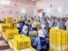 biomarkt-algerien6